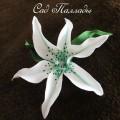 Белая лилия-2